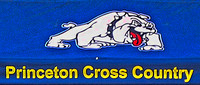 1A cross country championship